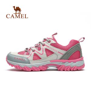 Camel/骆驼 A51303601