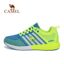 Camel/骆驼 A61397604