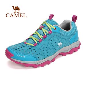 Camel/骆驼 A61332604
