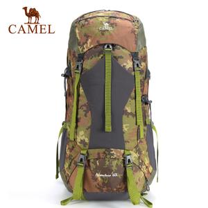 Camel/骆驼 A5W3E3119