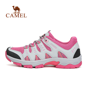 Camel/骆驼 A61326605