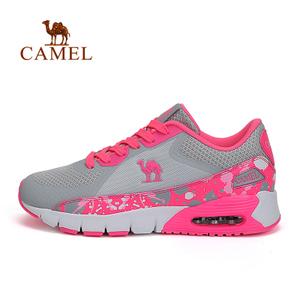 Camel/骆驼 A61389602