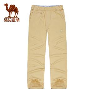Camel/骆驼 A6S41V101