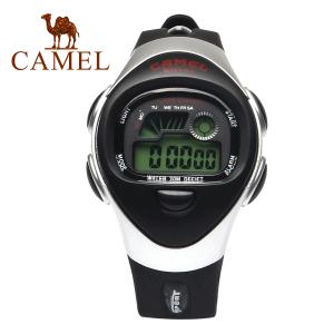 Camel/骆驼 2SA456B
