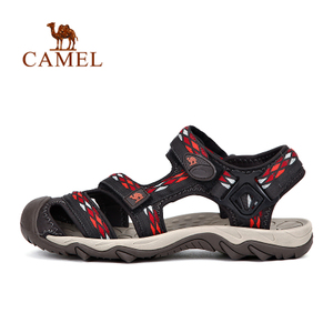 Camel/骆驼 A61334600