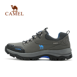 Camel/骆驼 A532330295