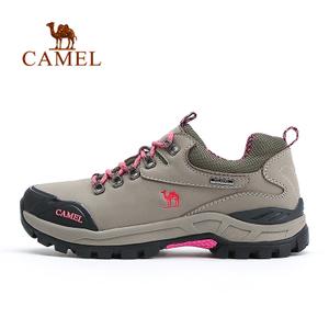 Camel/骆驼 A53330610