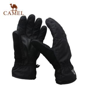 Camel/骆驼 2F20083