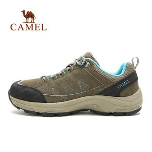 Camel/骆驼 A53332601