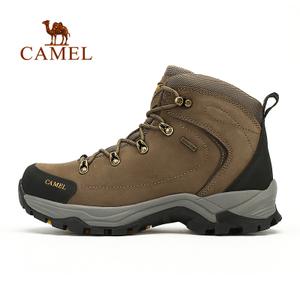 Camel/骆驼 A532026355