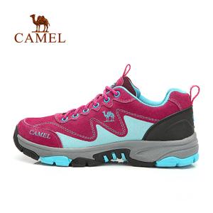 Camel/骆驼 A94303610