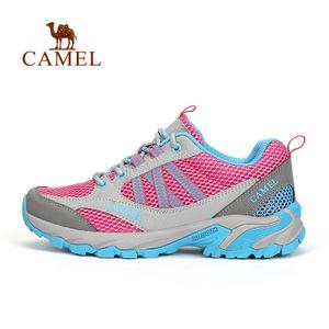 Camel/骆驼 A61303630