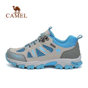 Camel/骆驼 A61303624