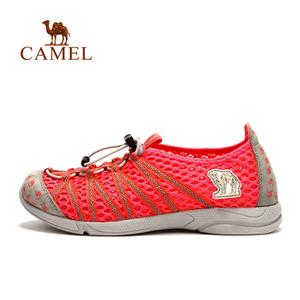 Camel/骆驼 A51347600