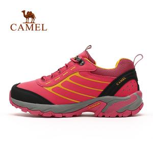 Camel/骆驼 A53303613