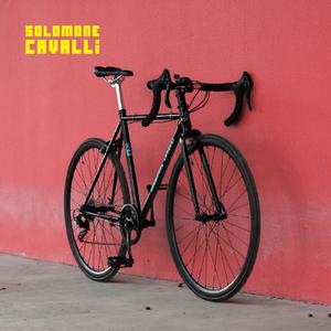 Solomone Cavalli GD004