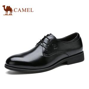 Camel/骆驼 A632272290