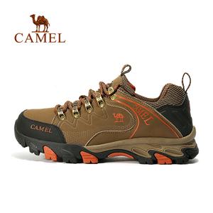 Camel/骆驼 A632303665