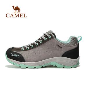 Camel/骆驼 A63149621