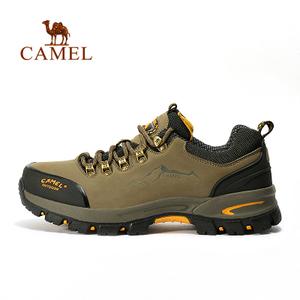 Camel/骆驼 A632326125