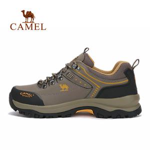 Camel/骆驼 A632026975