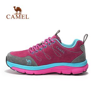 Camel/骆驼 A63303642