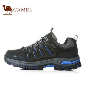Camel/骆驼 A632303615