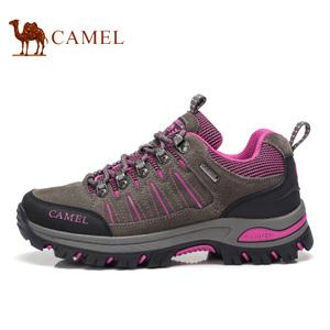 Camel/骆驼 A63303661