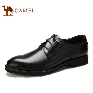 Camel/骆驼 A632148330