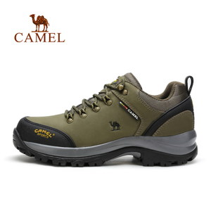 Camel/骆驼 A632026185