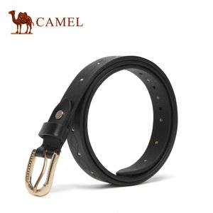 Camel/骆驼 DW242015-01