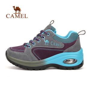 Camel/骆驼 A63303640