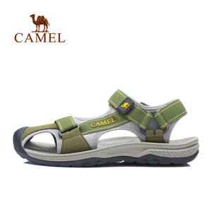 Camel/骆驼 A622162237