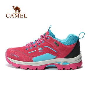 Camel/骆驼 A632303715