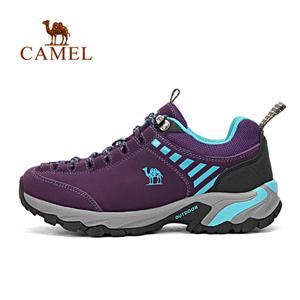 Camel/骆驼 A63303652