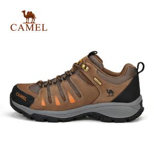 Camel/骆驼 A632026725