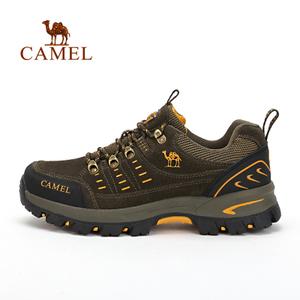Camel/骆驼 A632303755