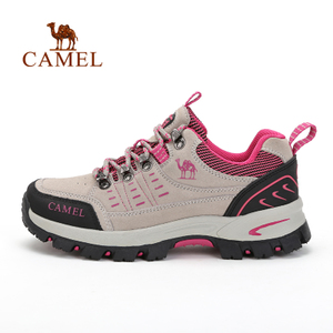 Camel/骆驼 A63303657