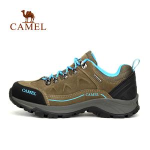 Camel/骆驼 A63149613
