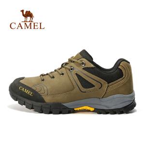 Camel/骆驼 A632026775
