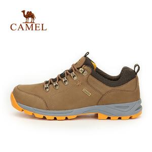 Camel/骆驼 A632326135