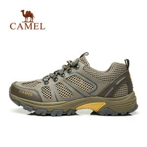 Camel/骆驼 A622303935