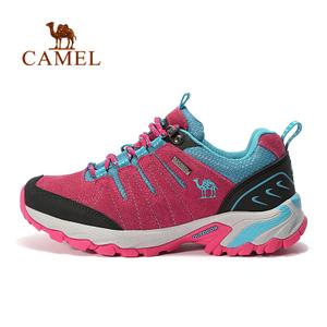 Camel/骆驼 A63303647