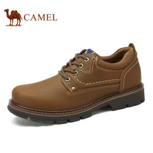 Camel/骆驼 A632329340