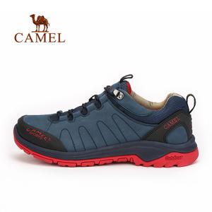 Camel/骆驼 A632302275