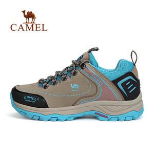 Camel/骆驼 A63303638