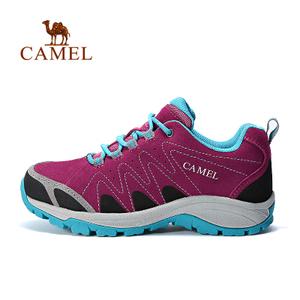 Camel/骆驼 A63149618
