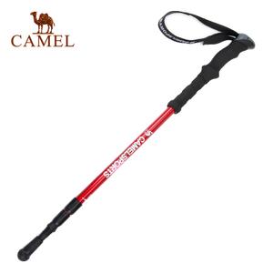 Camel/骆驼 A6W3A7103