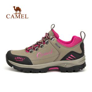 Camel/骆驼 A63303655