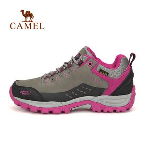 Camel/骆驼 A63149616